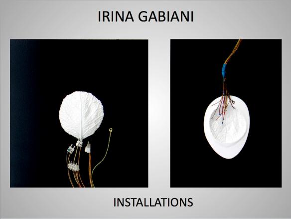 Irina Gabiani Installations